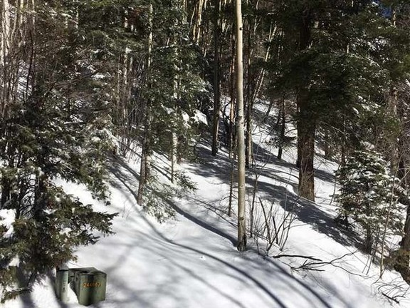 House in Taos Ski Valley - Great Lot, minutes from the Slopes