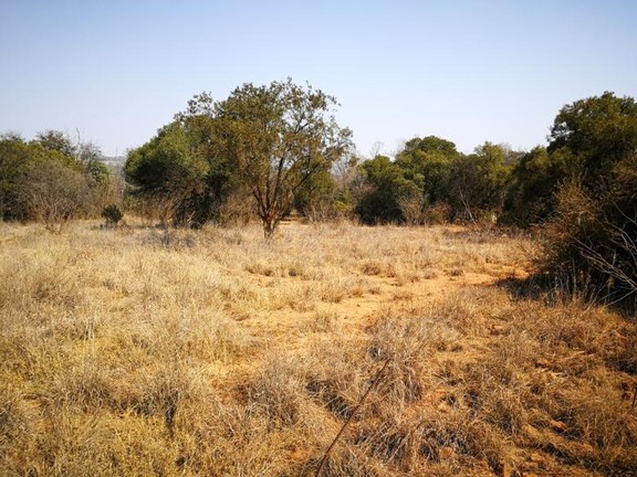 Land in Plots - Vacant land