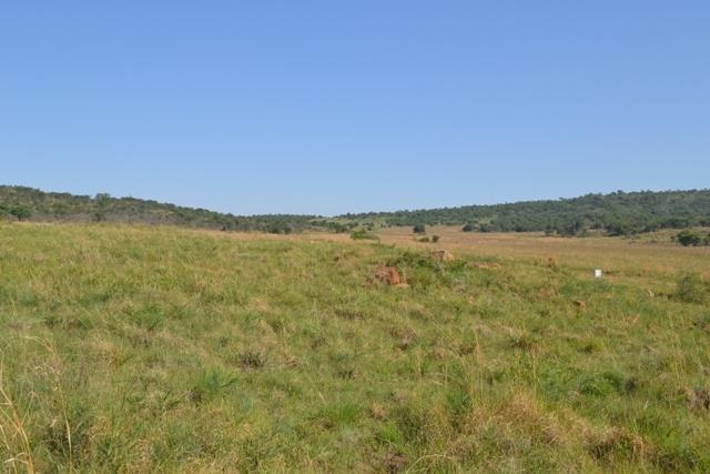Land in Lekwena Wildlife Estate - 5_4THY3b7.JPG