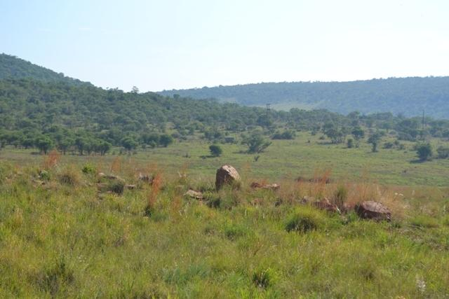 Land in Lekwena Wildlife Estate - 13_ww25UeB.JPG