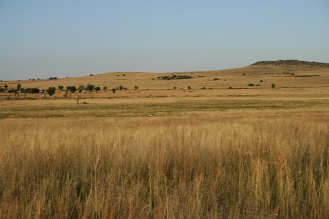 Land in Lekwena Wildlife Estate - 33_9d4OS6X.JPG