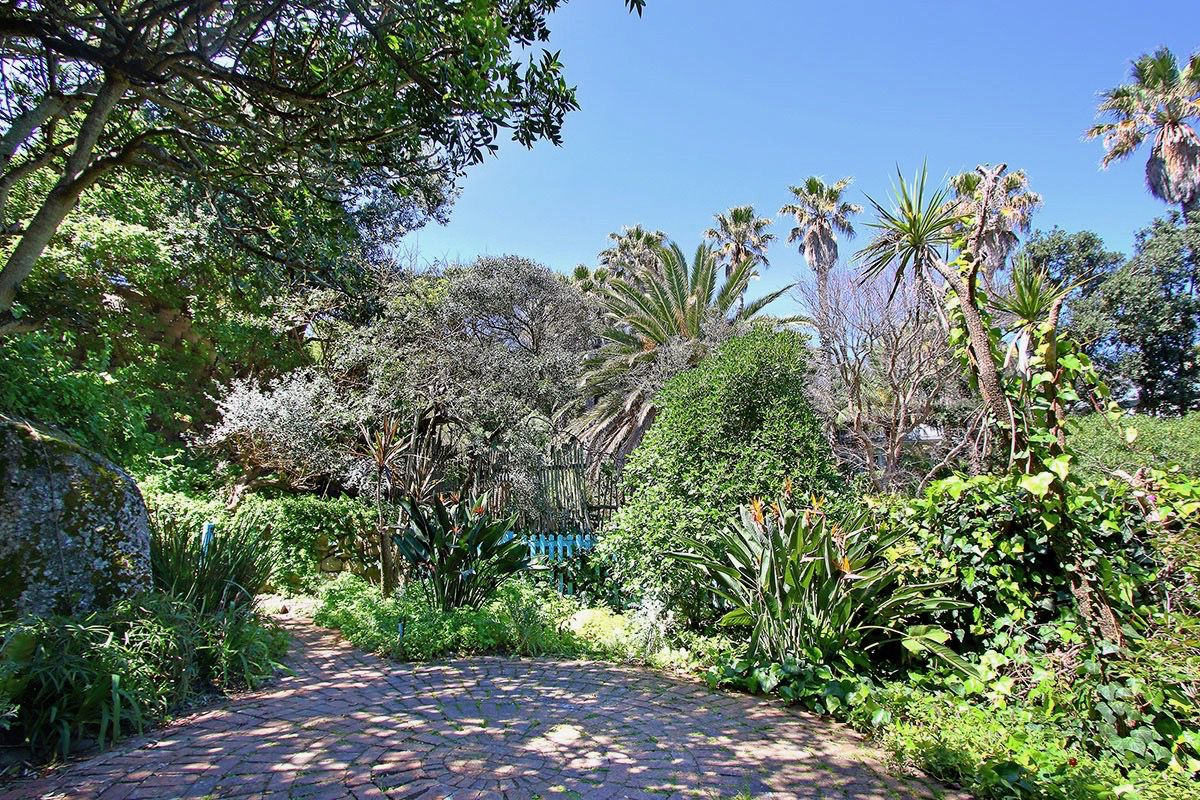 House in Camps Bay - 43.DS VIEW OF BACK GARDEN.jpg