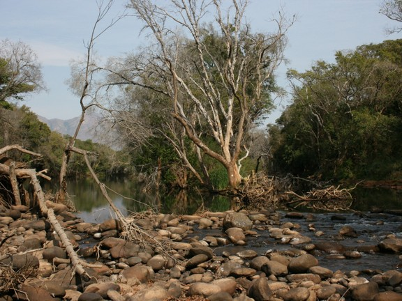 House in Blyde Wildlife Estate - river feature