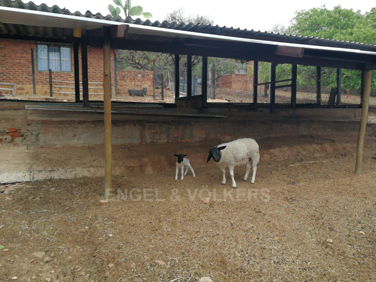 Land in Hartbeespoort Dam Area - Feeding pens for animals