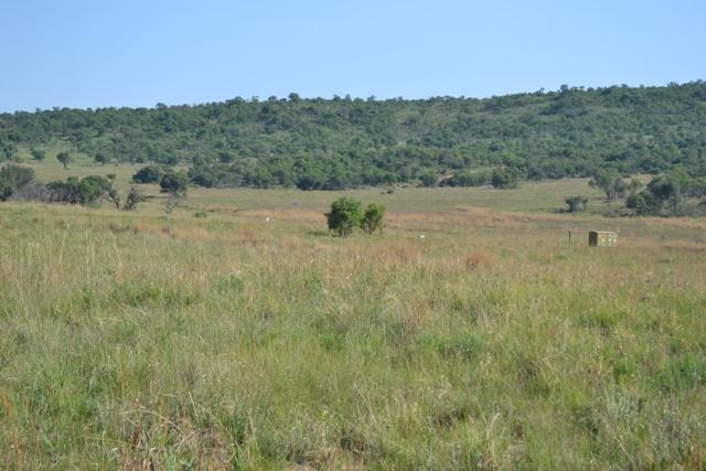 Land in Lekwena Wildlife Estate - 11_hMv6h76.JPG