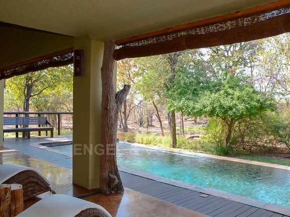 House in Phalaborwa & surrounds - View of the swimming pool 3.jpg