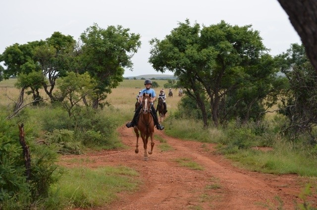 Land in Lekwena Wildlife Estate - Horse Riders Welcome