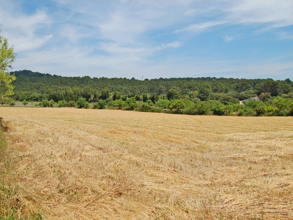 Land in Llucmajor - Plot with countryside views in Llucmajor