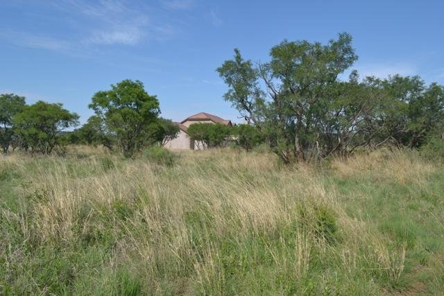 Land in Lekwena Wildlife Estate - 21_qkgO6WZ.JPG