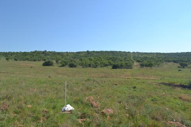 Land in Lekwena Wildlife Estate - 22_CapXXs4.JPG