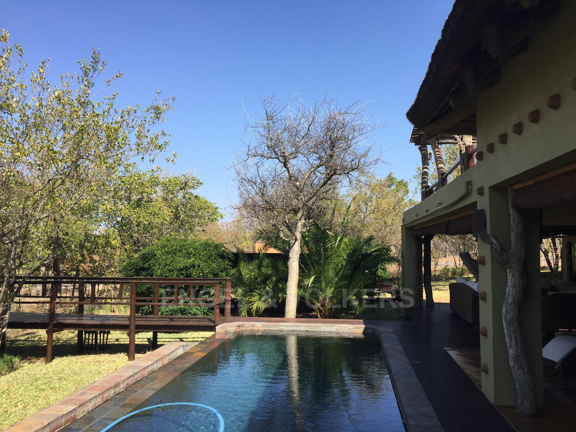 House in Phalaborwa & surrounds - View of the swimming pool