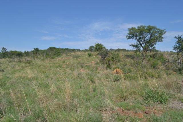 Land in Lekwena Wildlife Estate - 28_0PuL9Yt.JPG