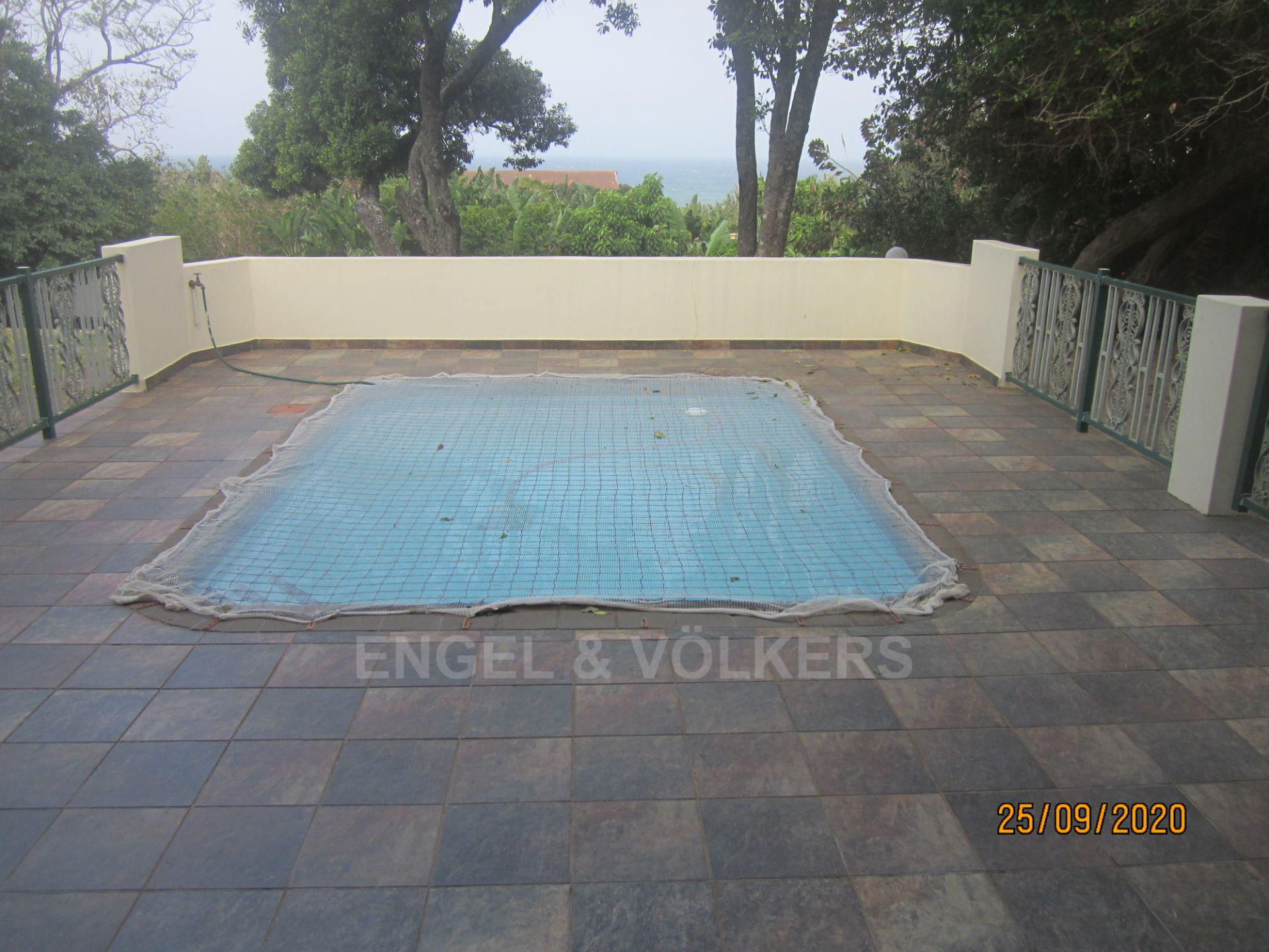 Apartment in Shelly Beach - Pool