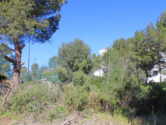 Land in Cala Blava - Plot with mains water and electricity in Cala Blava