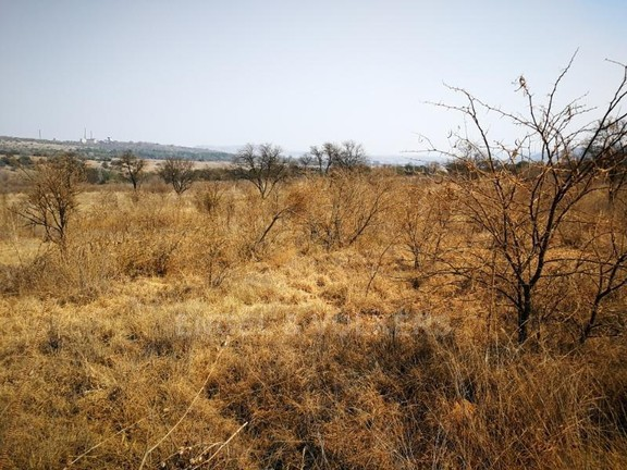 Land in Plots - 10 hectares of vacant land