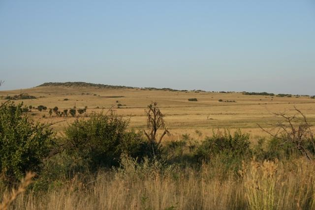 Land in Lekwena Wildlife Estate - 30_5bv45oz.JPG