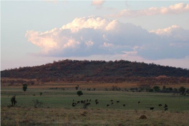 Land in Lekwena Wildlife Estate - 1_rWGdEQZ.jpg