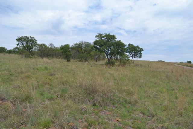 Land in Lekwena Wildlife Estate - 39_tyN8Xe6.JPG