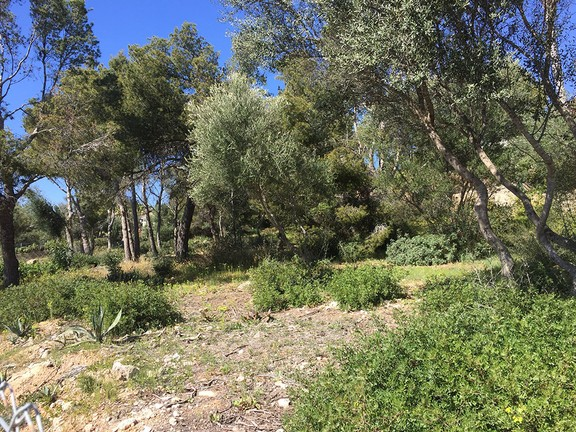 Land in Nova Santa Ponsa - Southwest facing plot in popular location in Nova Santa Ponsa