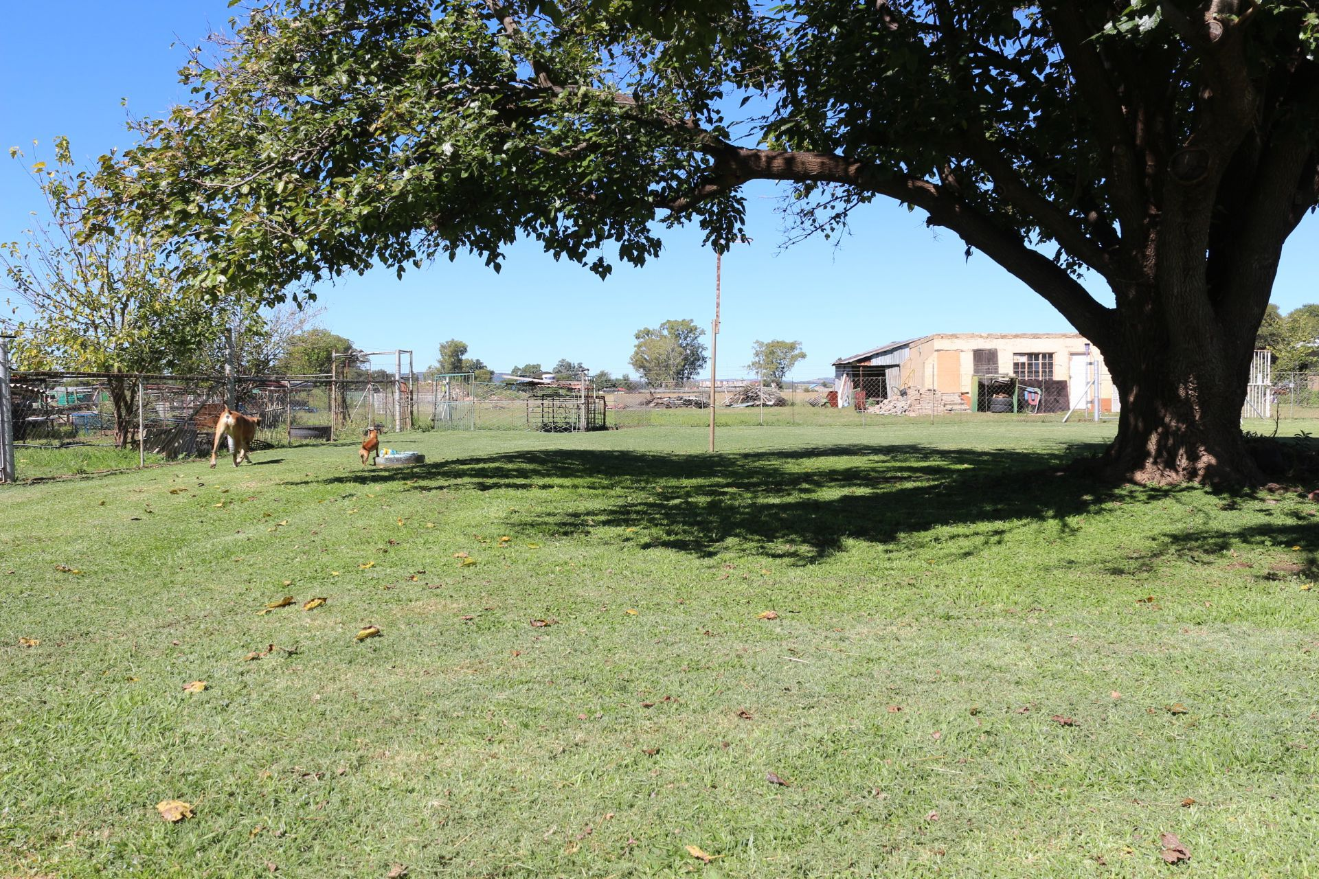 Land in Vyfhoek - IMG_2524.JPG
