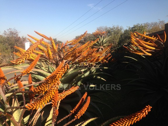 Land in Seasons Eco Golf Estate - Aloes_V7lPHzp.JPG