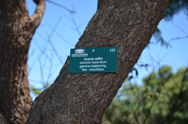 Land in Lekwena Wildlife Estate - Tree Tags Along Walking Routes