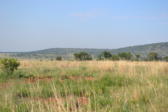 Land in Lekwena Wildlife Estate - 16_EzoNno6.JPG