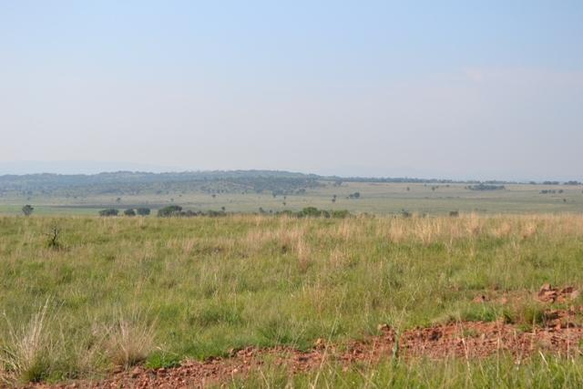 Land in Lekwena Wildlife Estate - 15_D2YH1JY.JPG