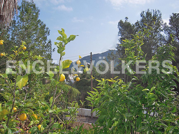Land in Cala Llonga - View from the plot