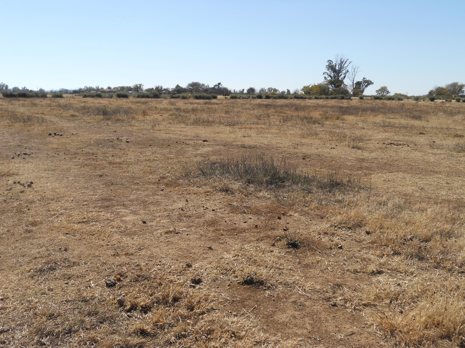 Land in Vyfhoek - View To North