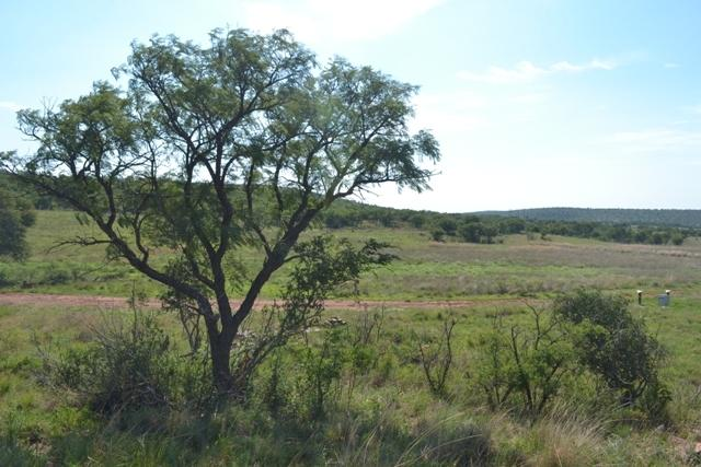Land in Lekwena Wildlife Estate - 25_jYrXbQa.JPG