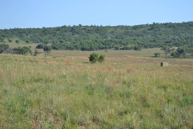 Land in Lekwena Wildlife Estate - 9_A1i1sdJ.JPG
