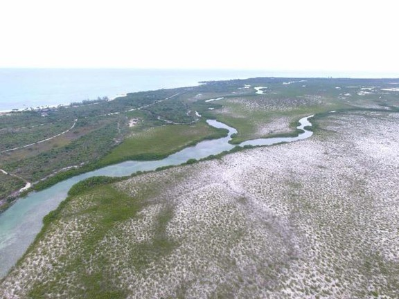 Land in Parrot Cay