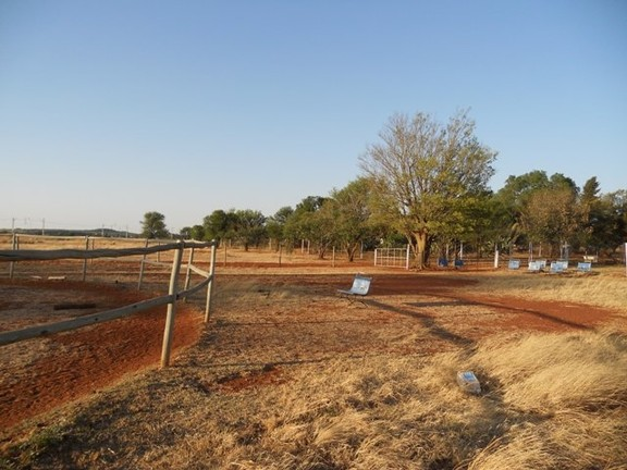 Land in Oudedorp - Riding School Facilities
