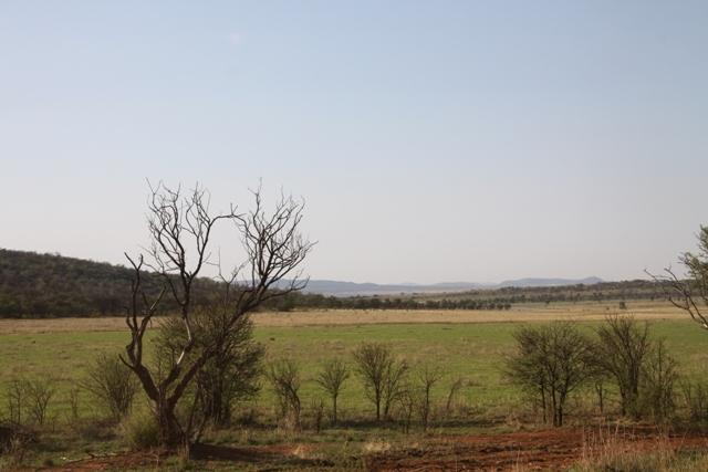 Land in Lekwena Wildlife Estate - 27_IFH3AUG.JPG