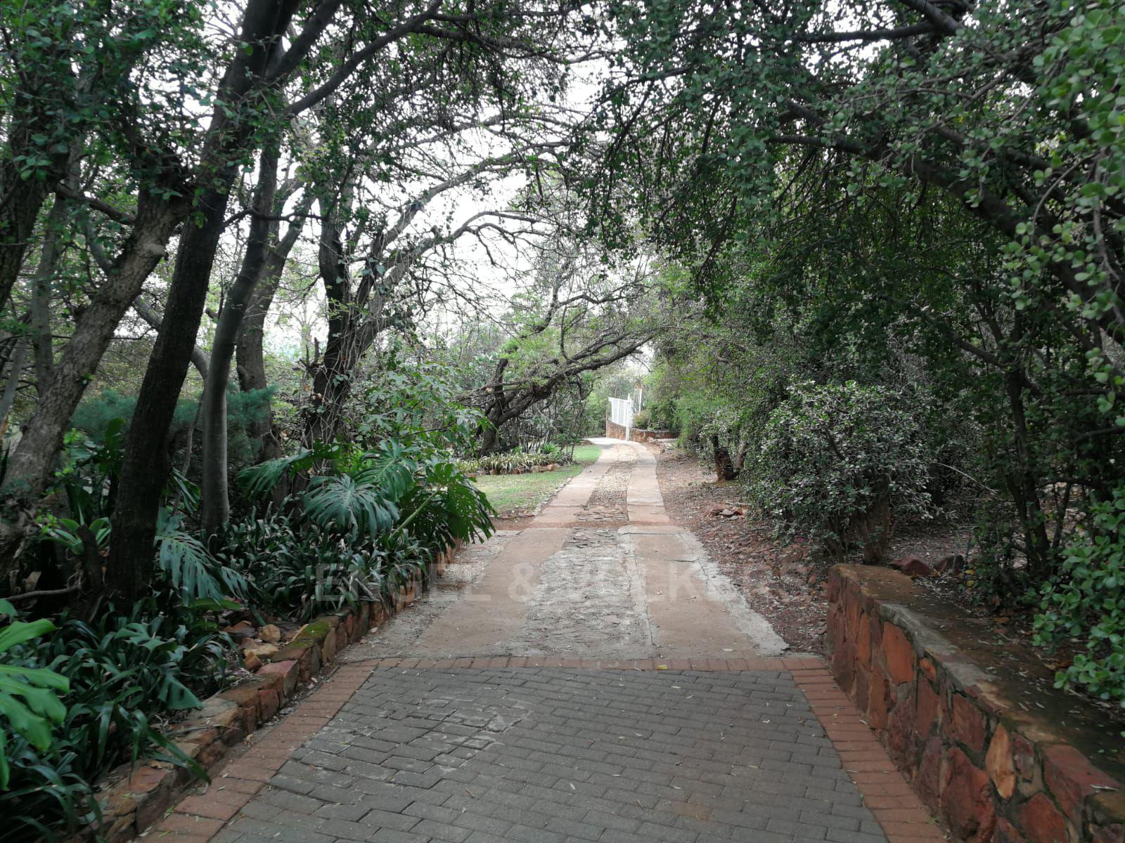 Land in Hartbeespoort Dam Area - Inviting driveway into property