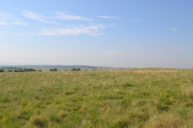 Land in Lekwena Wildlife Estate - 7_k4CDY0s.JPG