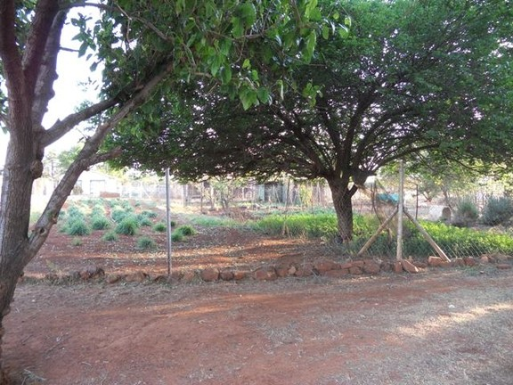 Land in Oudedorp - Leafy Garden