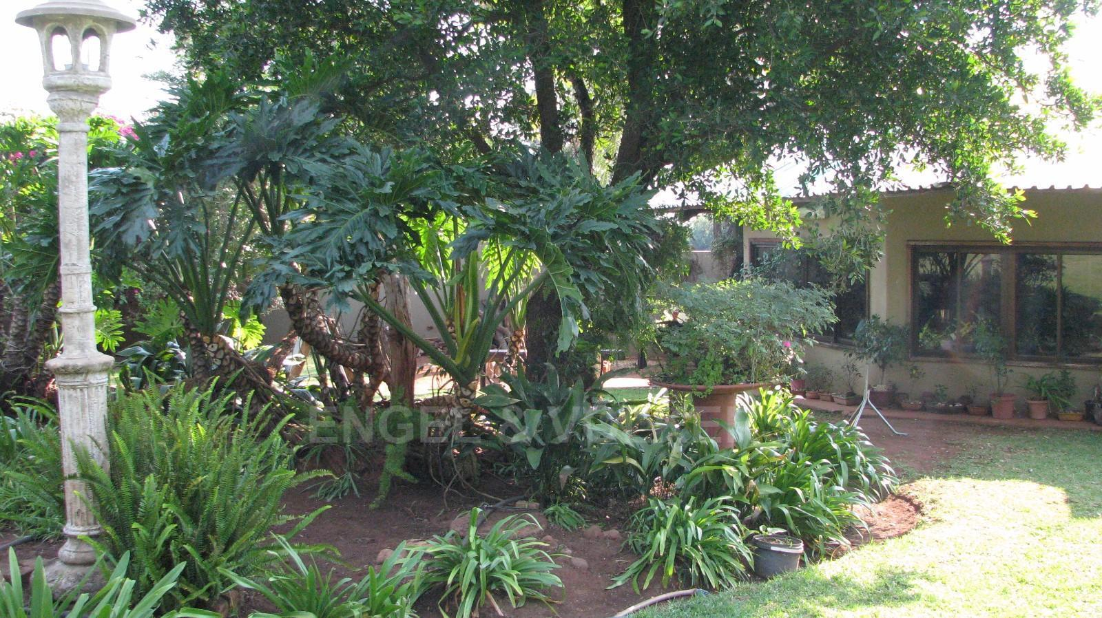 Land in Farms - Garden area at main property