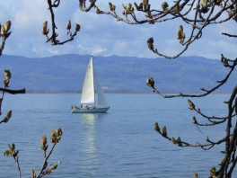 Bodensee-14