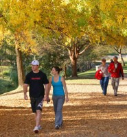 The Lonehill Park