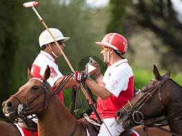 Do you think you could be a good polo player?
