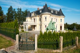 Pure luxury: living in a German villa