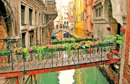 venice-canal-transition-bridge-flowers