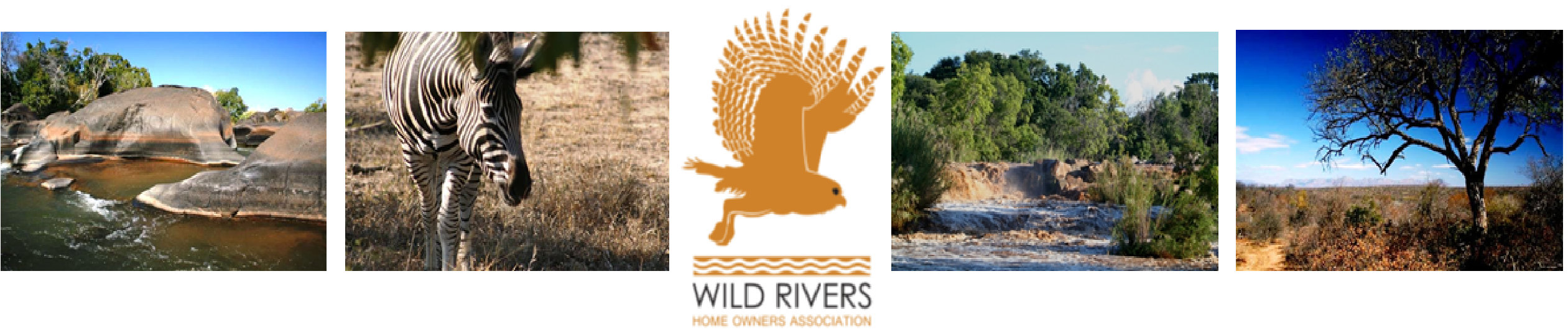Wild Rivers Banner  NEW