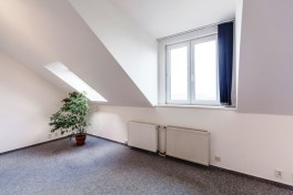 Huge flat with 191 sqm in Prague