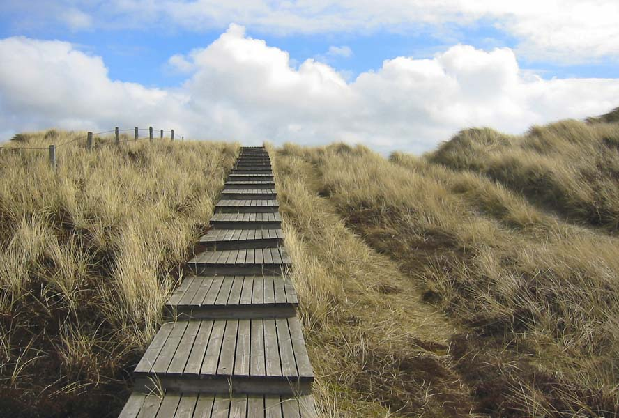Germany's hidden gem: The island of Sylt