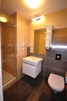 Smaller bathroom suitable for children or guests
