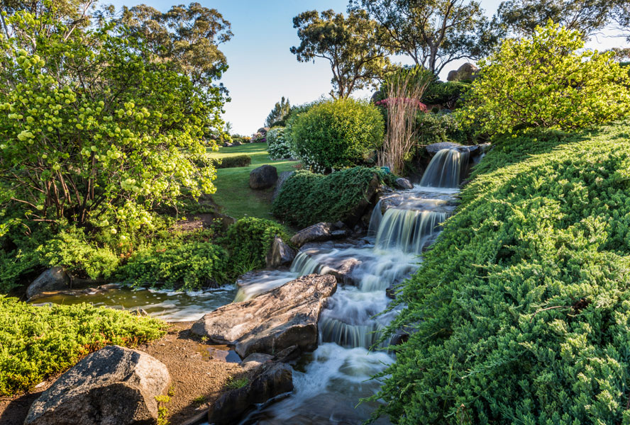 Learn from Australia: Garden trends