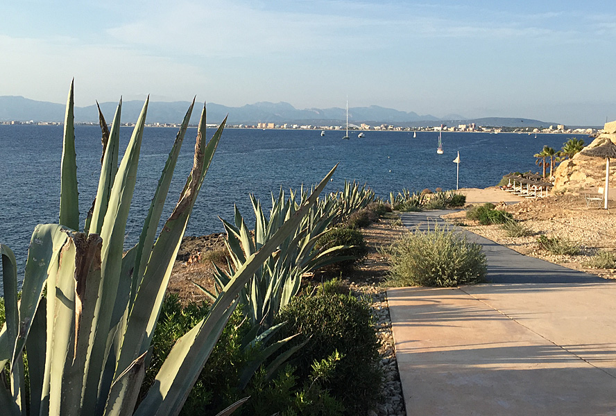 Mallorca insider tips - one of the most beautiful islands for your second home